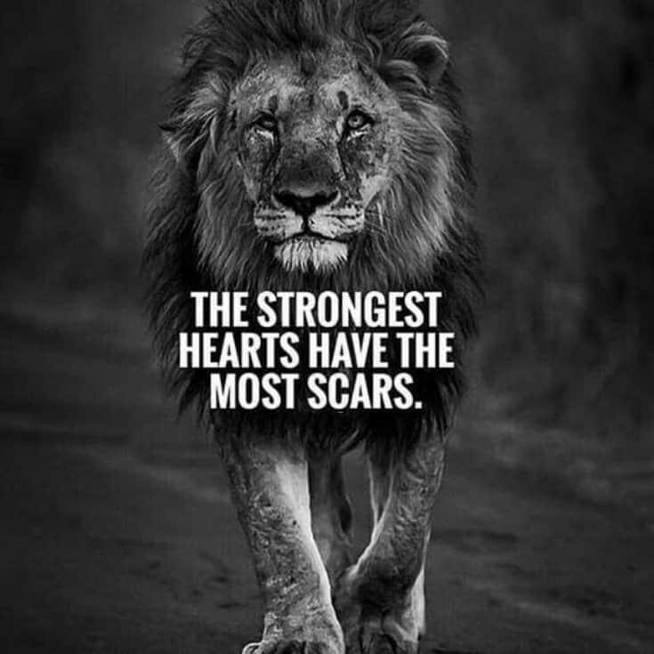 247 Motivational Inspirational Quotes 43