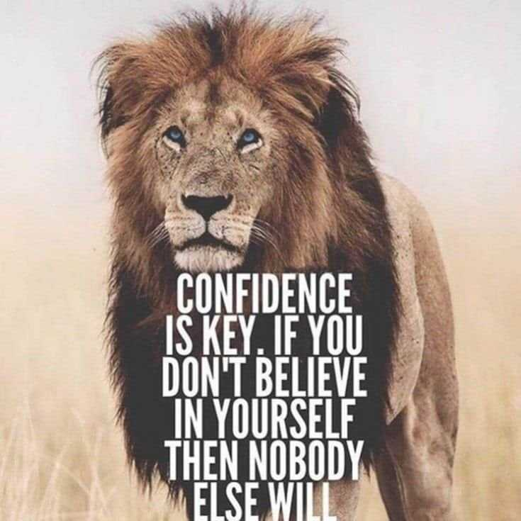 247 Motivational Inspirational Quotes 47