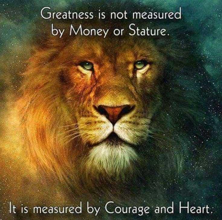 247 Motivational Inspirational Quotes 49