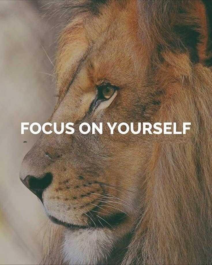 247 Motivational Inspirational Quotes 52