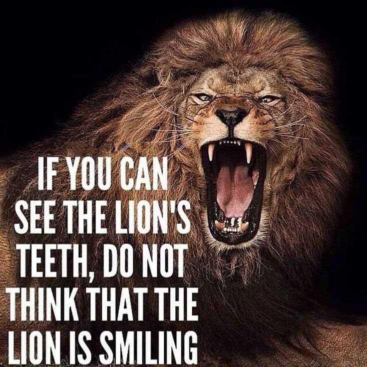 247 Motivational Inspirational Quotes 64