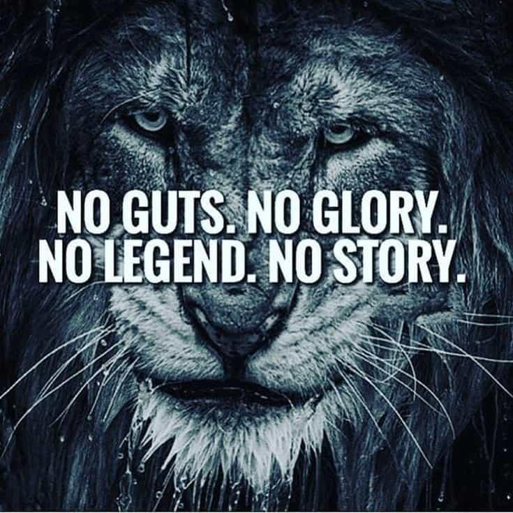 247 Motivational Inspirational Quotes 70