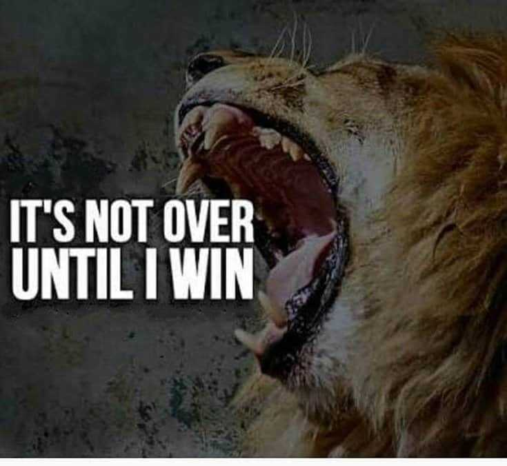 247 Motivational Inspirational Quotes 71
