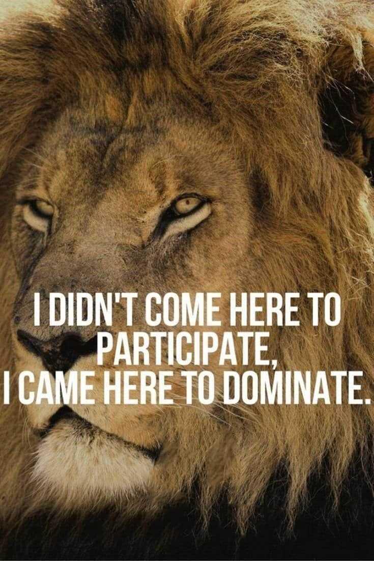 247 Motivational Inspirational Quotes 72