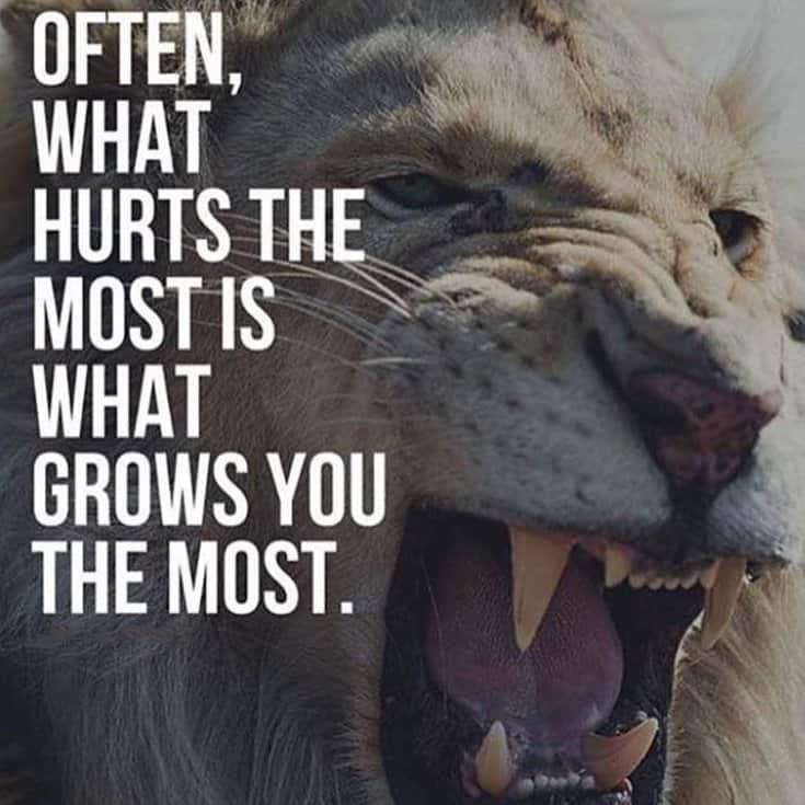 247 Motivational Inspirational Quotes 89
