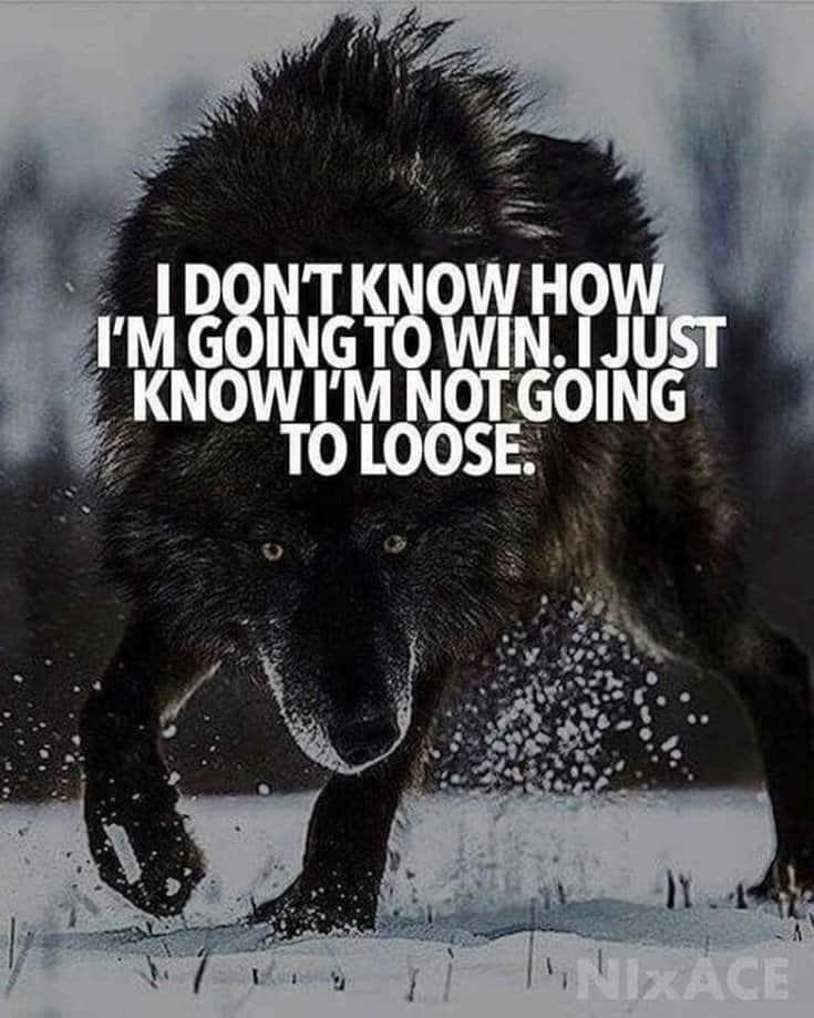 247 Motivational Inspirational Quotes 91