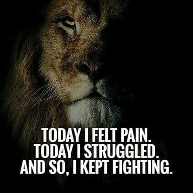 247 Motivational Inspirational Quotes 93