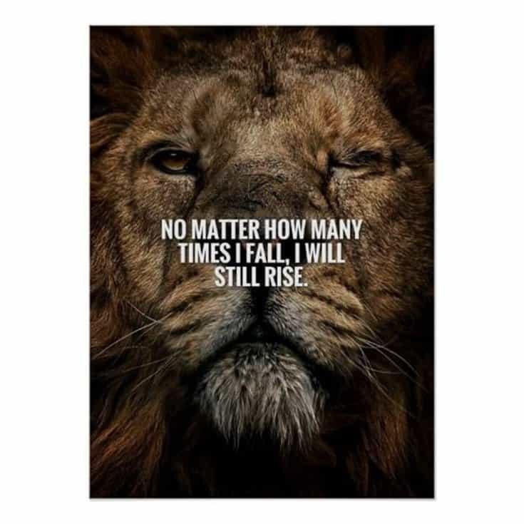 247 Motivational Inspirational Quotes 96