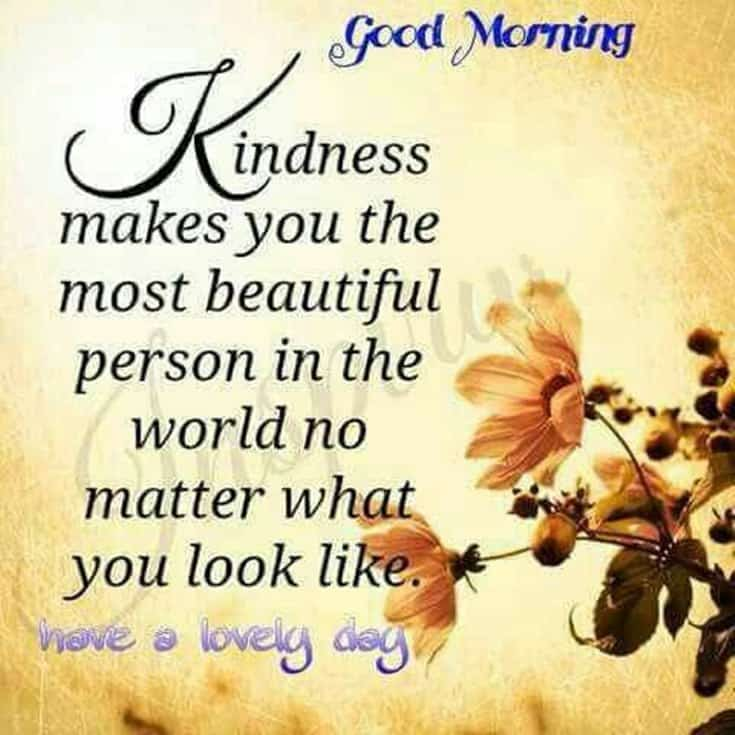 100 Good Morning Quotes with Beautiful Images 11