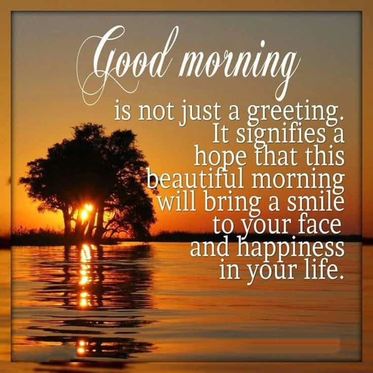 100 Good Morning Quotes with Beautiful Images 19
