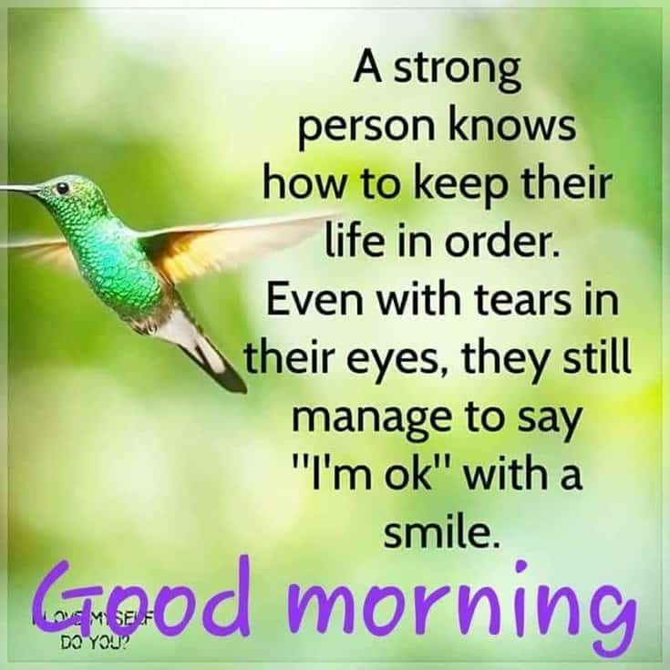 100 Good Morning Quotes with Beautiful Images 37