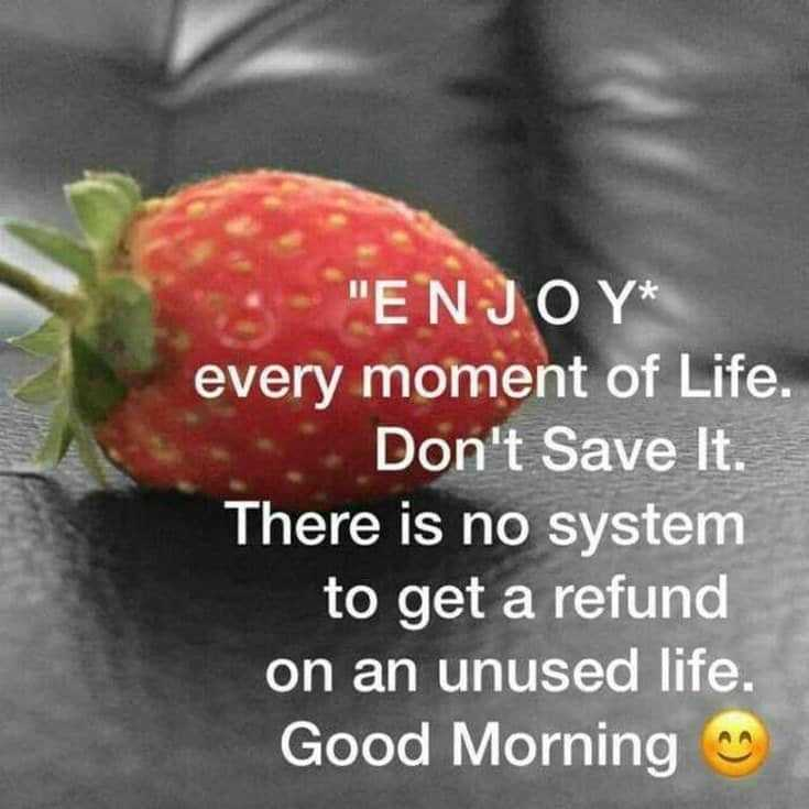 100 Good Morning Quotes with Beautiful Images 50
