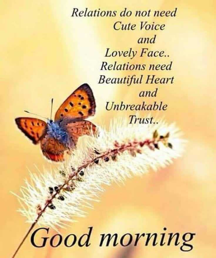 100 Good Morning Quotes with Beautiful Images 63