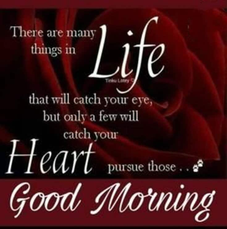 100 Good Morning Quotes with Beautiful Images 69