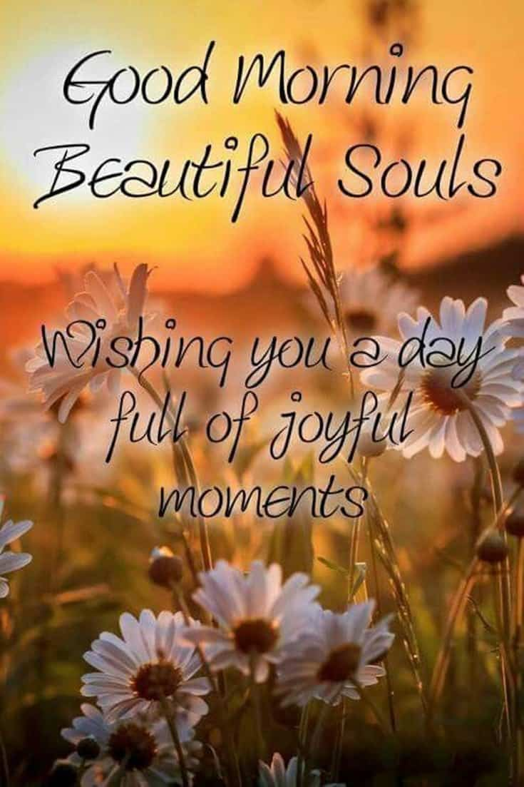 100 Good Morning Quotes with Beautiful Images 82
