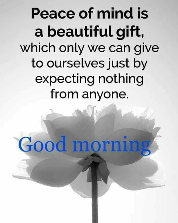 100 Good Morning Quotes with Beautiful Images 84