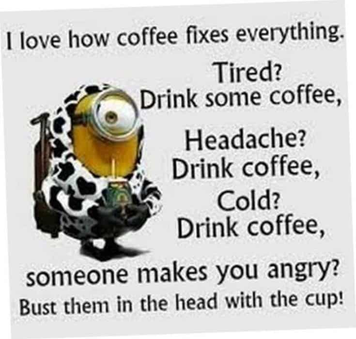 50 Funny Minions Quotes and Sayings 11
