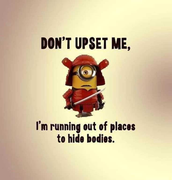 50 Funny Minions Quotes and Sayings 12