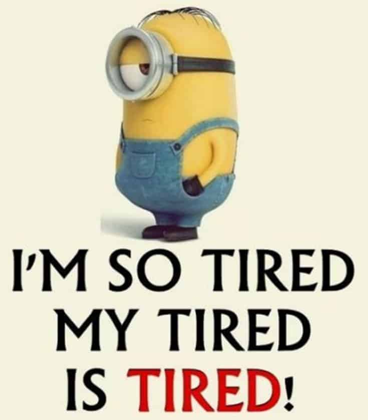50 Funny Minions Quotes and Sayings 21