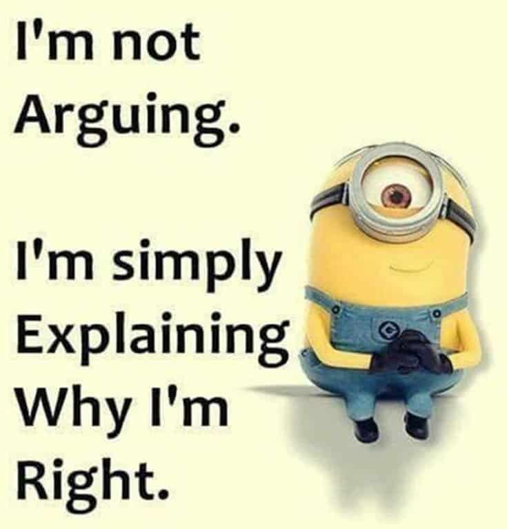 50 Funny Minions Quotes and Sayings 25