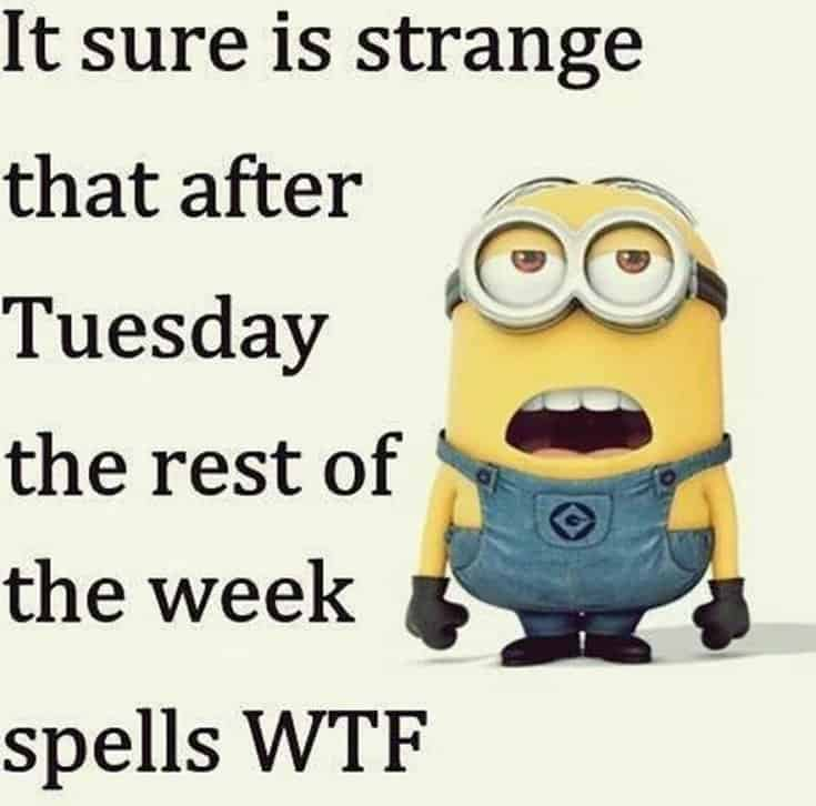50 Funny Minions Quotes and Sayings 29