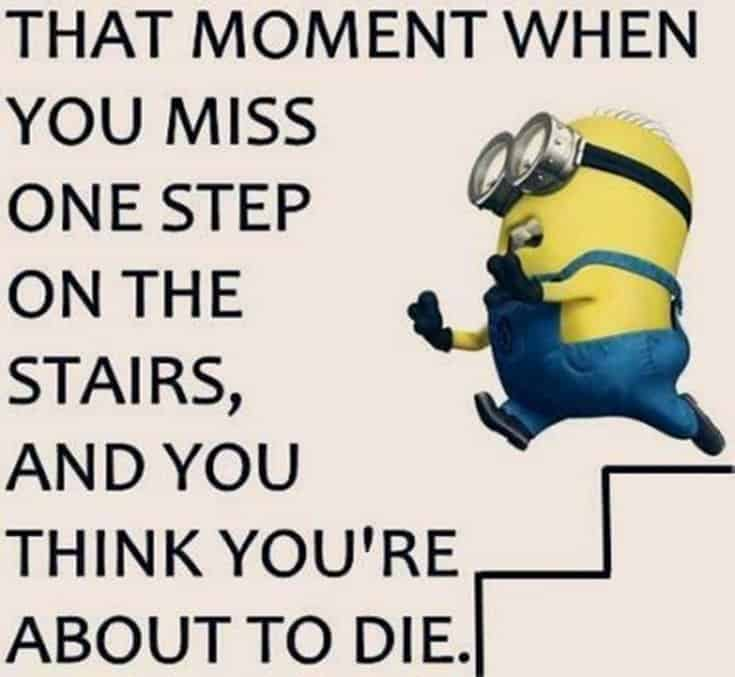 50 Funny Minions Quotes and Sayings 30