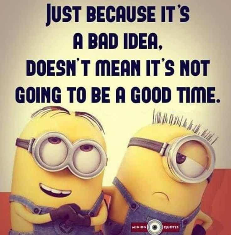 50 Funny Minions Quotes and Sayings 31