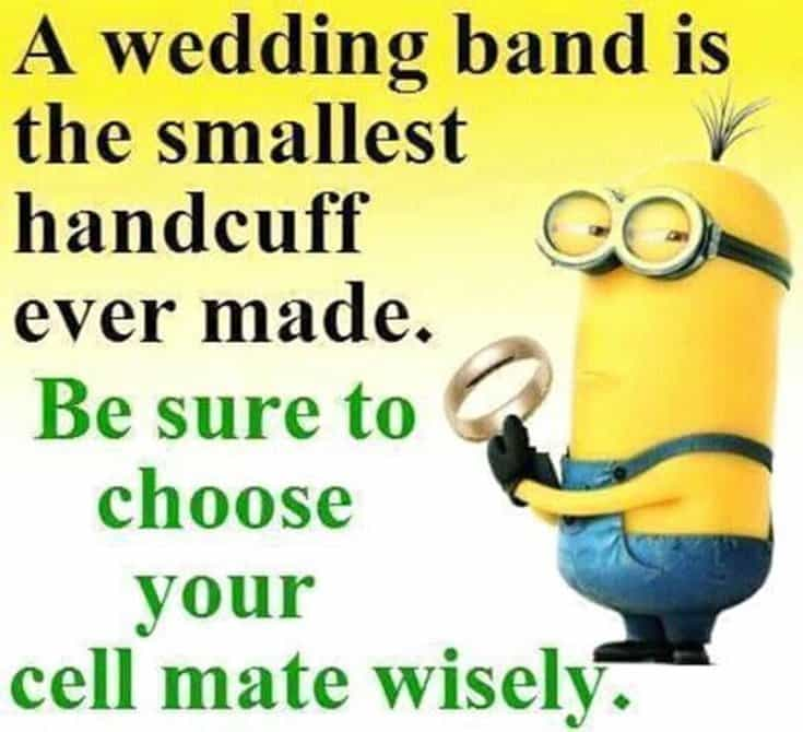 50 Funny Minions Quotes and Sayings 35