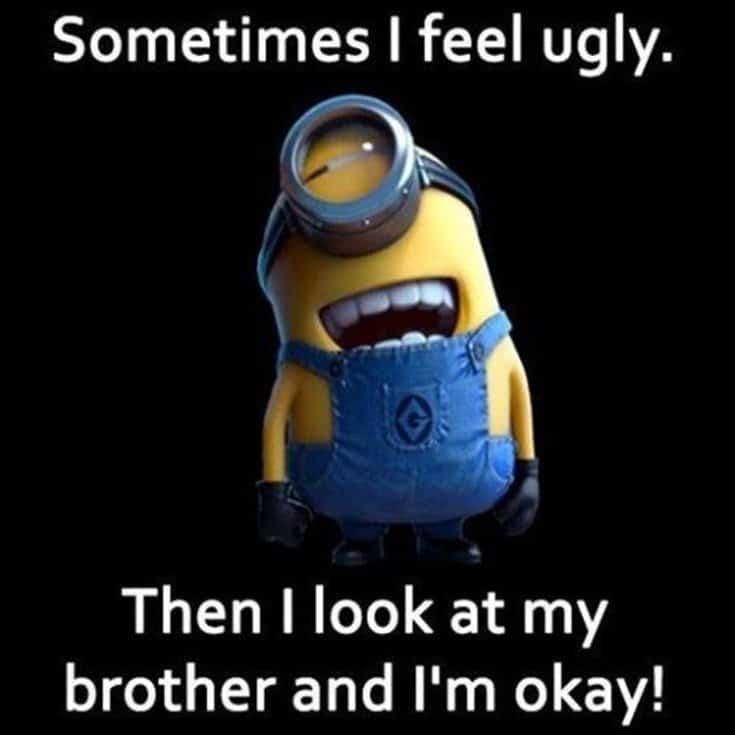 50 Funny Minions Quotes and Sayings 37