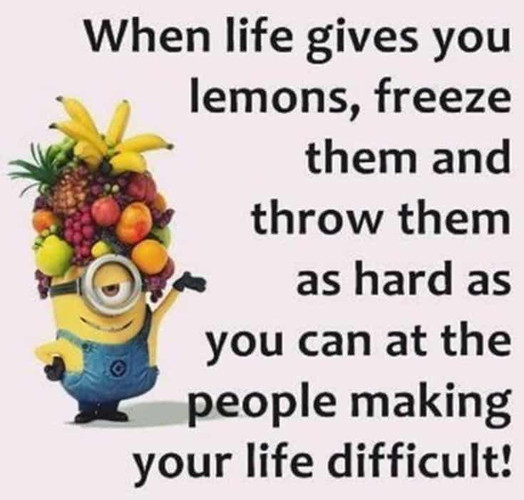 50 Funny Minions Quotes and Sayings 41
