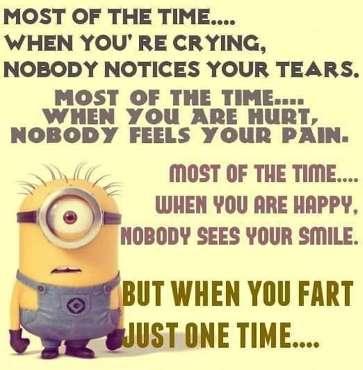 50 Funny Minions Quotes and Sayings 49