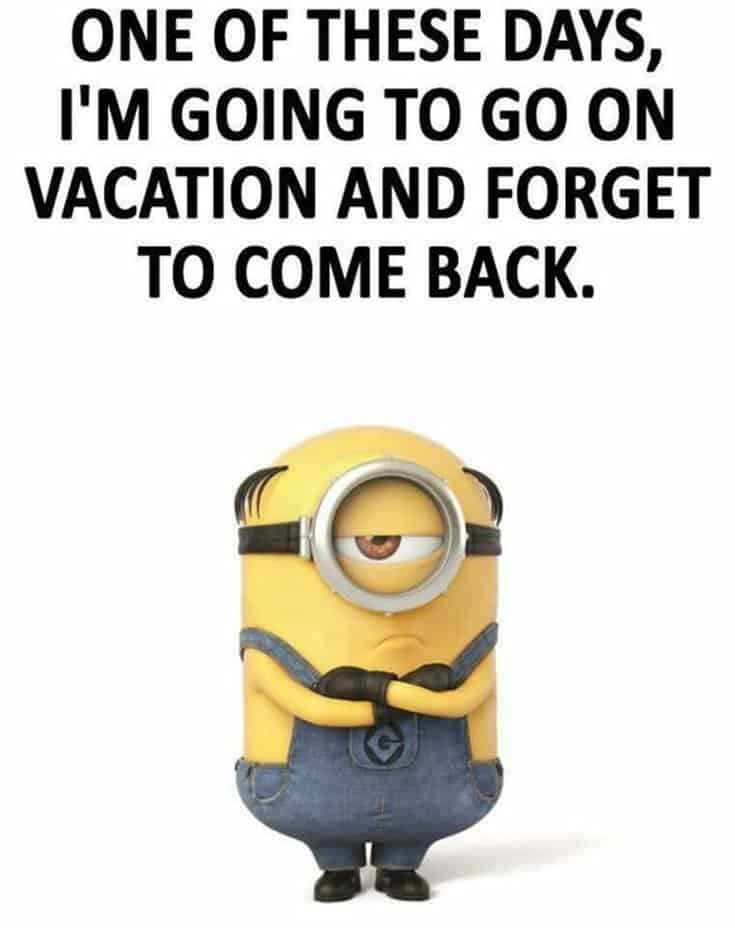 50 Funny Minions Quotes and Sayings 5