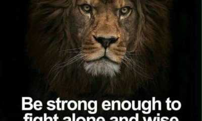 38 Strength Quotes on Life to Empower You To Succeed 36