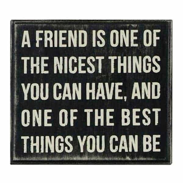38 True Friendship Quotes – Best Friends Forever Quotes 22