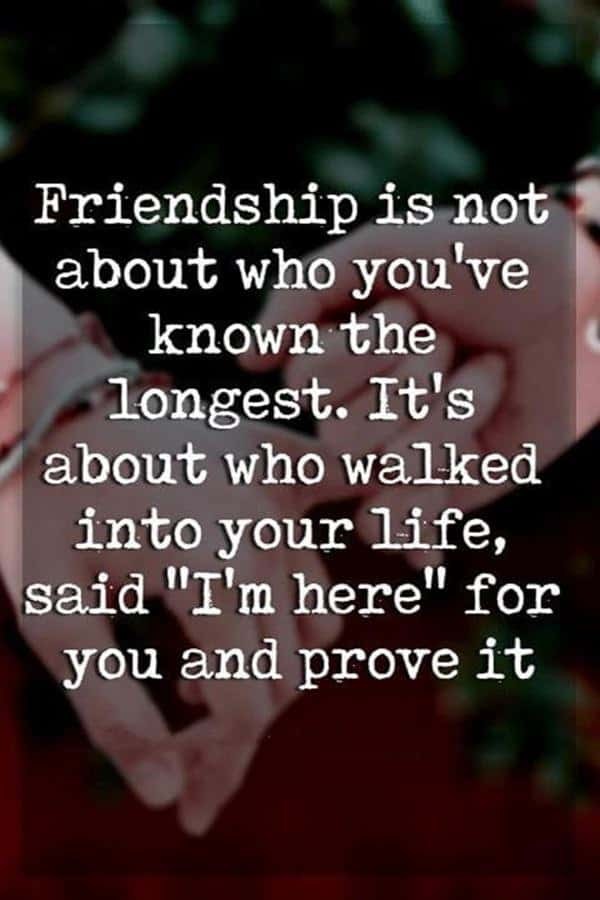 38 True Friendship Quotes – Best Friends Forever Quotes 25
