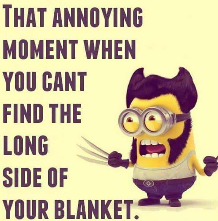 Top 37 Hilarious Minions Quotes – Life Quotes Humor 15