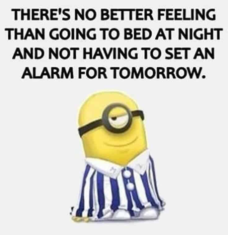 Top 37 Hilarious Minions Quotes – Life Quotes Humor 17