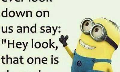 Top 37 Hilarious Minions Quotes – Life Quotes Humor 32