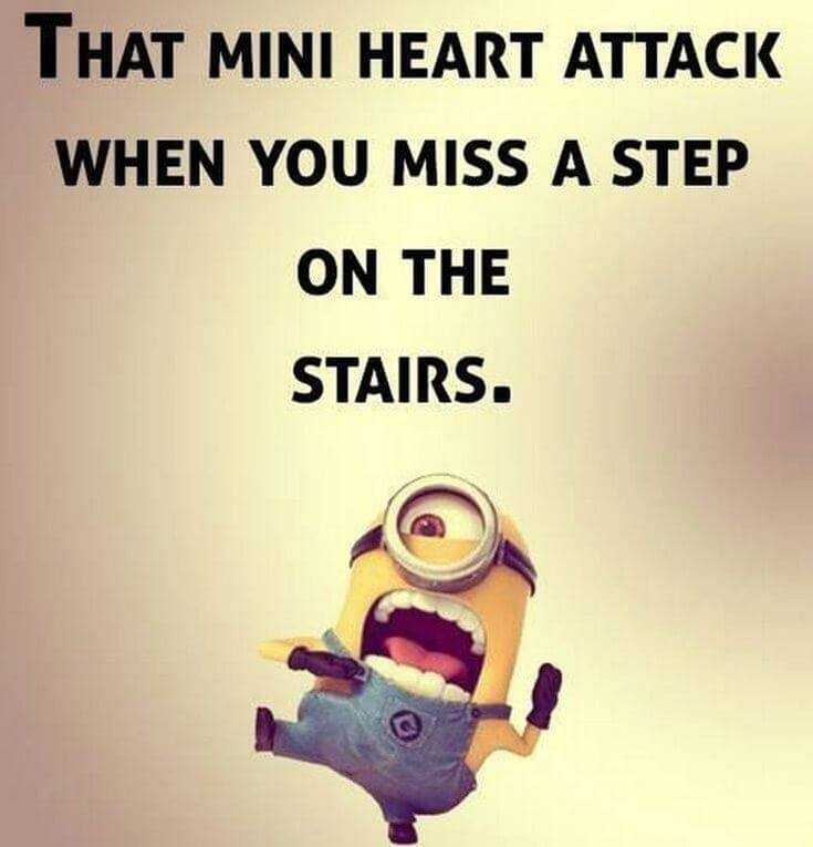 Top 37 Hilarious Minions Quotes – Life Quotes Humor 33