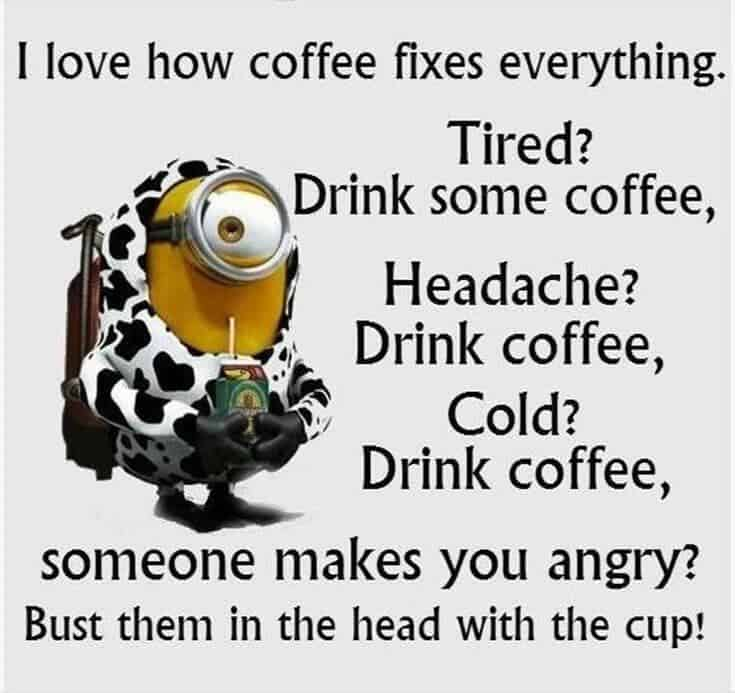 Top 37 Hilarious Minions Quotes – Life Quotes Humor 4