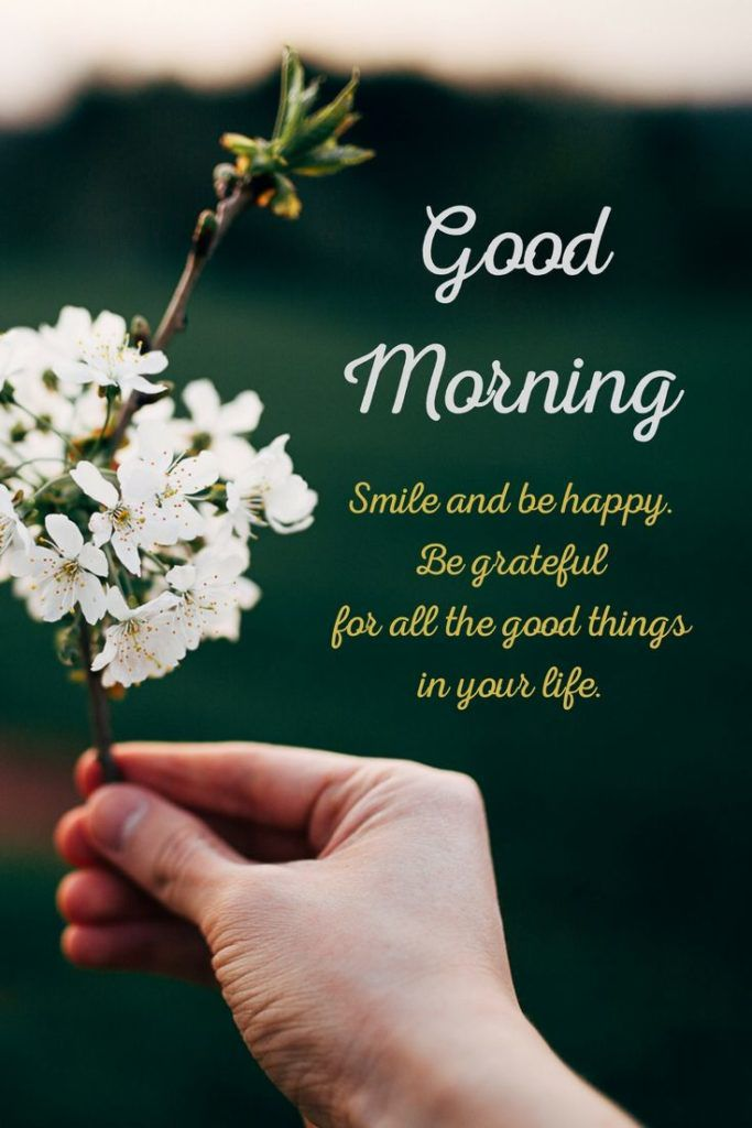 56 Good Morning Quotes and Wishes with Beautiful Images
