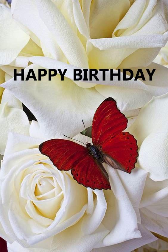 happy birthday gorgeous images