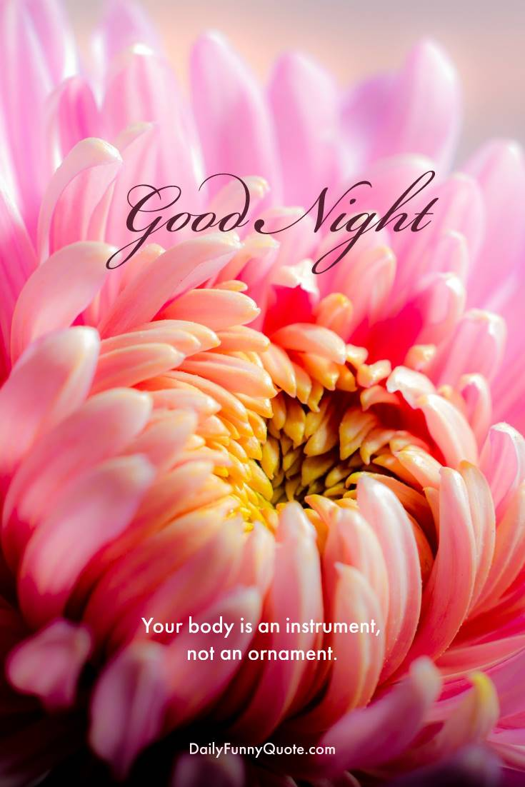 28 Amazing Good Night Quotes and Wishes with Beautiful Images 13