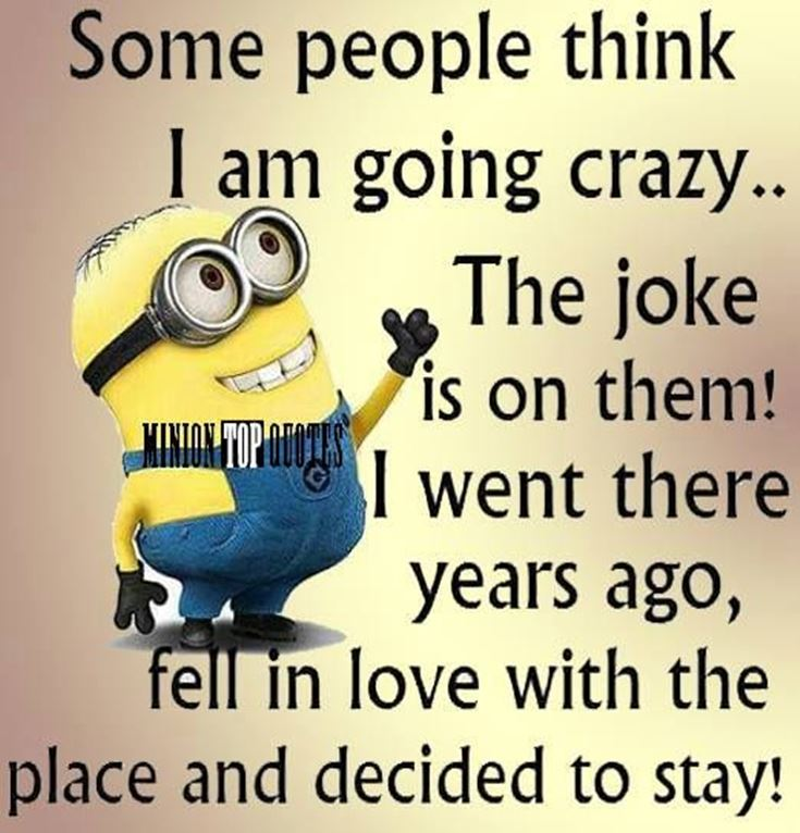 Funny Minions Quotes of the Week minion funny sayings memes for text messages