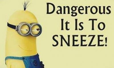 45 Funny Jokes Minions Quotes With Minions 18