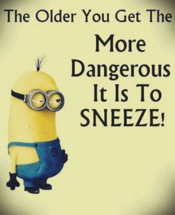 45 Funny Jokes Minions Quotes With minion funny sayings funny pics of minions