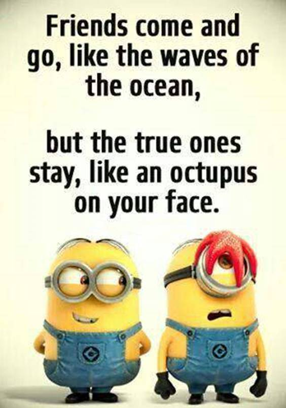 45 Funny Jokes Minions Quotes With Minions 5