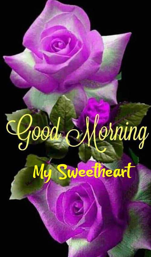 50 Romantic Good Morning Love Messages Morning Wishes 7