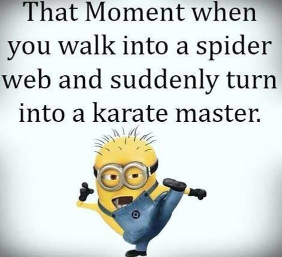 45 Hilariously Funny Minion Pictures With Quotes 15