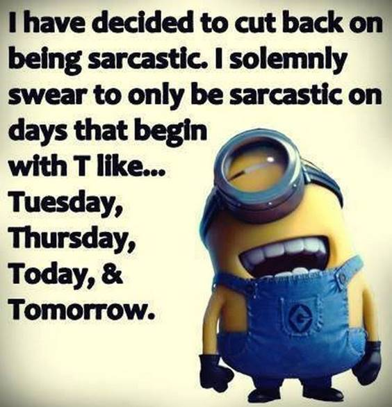 45 Hilariously Funny Minion Pictures With Quotes 18